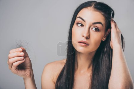 Photo for Young brunette woman holding fallen hair and looking away isolated on grey, hair loss concept - Royalty Free Image