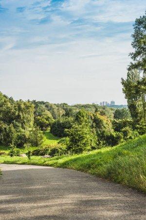 asphalt road in green park with landscape on background