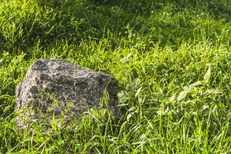full frame shot of boulder lying in green grass under sunlight