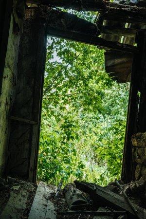 Photo pour Vue faible angle d'un bâtiment abandonné avec toit brisé et des arbres verts dans le trou - image libre de droit
