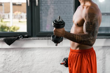 cropped image of muscular shirtless african american sportsman exercising with dumbbells at gym