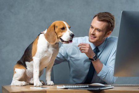 Photo for Happy young businessman playing with adorable beagle at table in modern office - Royalty Free Image