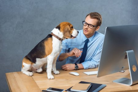 Photo for High angle view of young businessman in eyeglasses playing with dog at table in office - Royalty Free Image