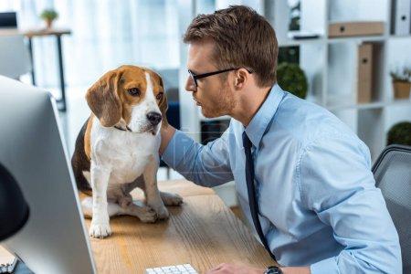 Photo pour Vue de côté du jeune homme d'affaires en lunettes de vue jouer avec chien à table dans le Bureau - image libre de droit