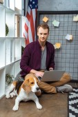 happy male freelancer working on laptop while beagle sitting near usa flag in home office
