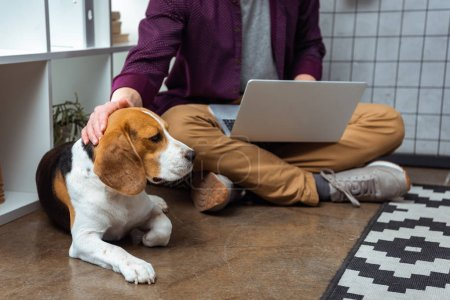Photo for Cropped image of male freelancer with laptop touching beagle in home office - Royalty Free Image