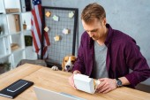 selective focus of businessman eating burger at table with laptop and smartphone while beagle standing near in office