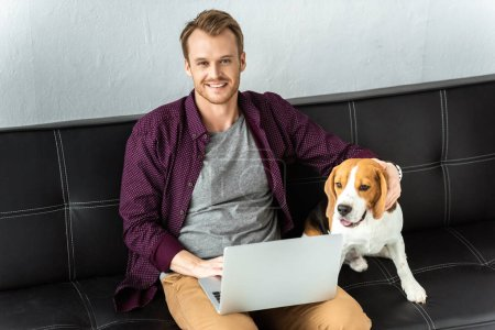 happy male freelancer sitting on sofa with laptop and adorable beagle at home