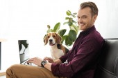 smiling male freelancer working on laptop while beagle sitting near on sofa at home office