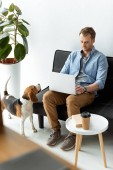 selective focus of male freelancer working on laptop while beagle running near at home office