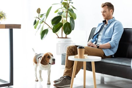 Photo for Male freelancer working on laptop while beagle running near table with paper coffee cup at home office - Royalty Free Image