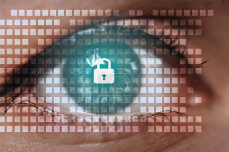 cropped shot of female eye looking at camera with cyber security sign