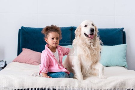 Curly african american child sitting on the bed and put her hand on dogs back