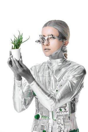 Photo pour Robot argenté tenant la plante en pot et regardant la caméra isolée sur blanc, concept technologique futur - image libre de droit