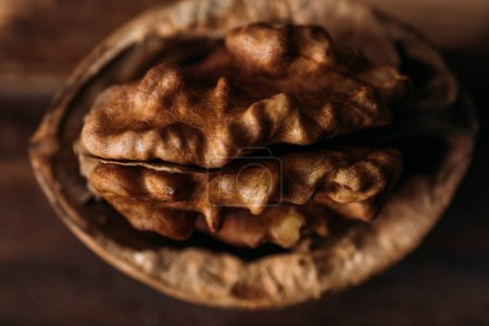 Photo for Top view of walnut in nut shell as dementia symbol - Royalty Free Image