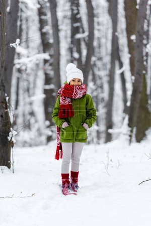 Photo for African american child in warm clothing looking at camera in winter park - Royalty Free Image