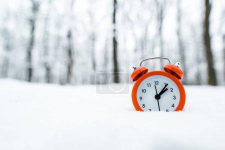 Photo pour Horloge rétro rouge debout sur la neige blanche près des arbres dans la forêt enneigée - image libre de droit