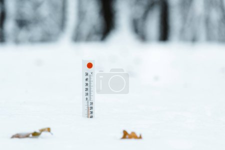 thermometer showing temperature outside in winter forest