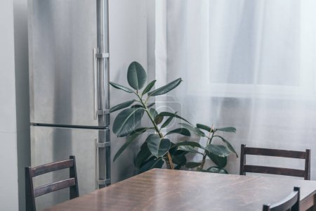 Photo for Wooden table, grey fridge and green plant in kitchen - Royalty Free Image