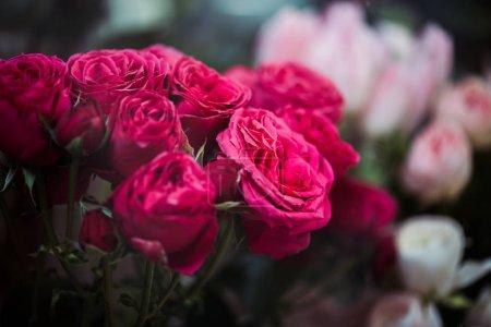 Foto de Enfoque selectivo de ramo con flores frescas de rosa rosa - Imagen libre de derechos