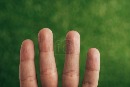 Photo for Cropped view of human fingers on green - Royalty Free Image