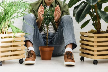 Photo for Cropped view of man in shirt and glasses sitting near pots with plants and brick wall in office - Royalty Free Image