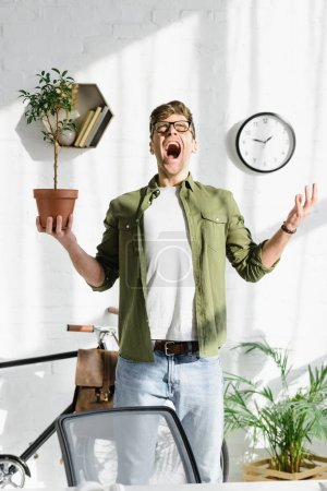 Photo for Cunning handsome man in green shirt and jeans holding pot with plant in office - Royalty Free Image