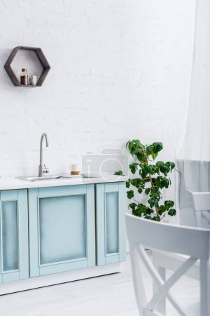 interior of light modern white and turquoise kitchen with green plant