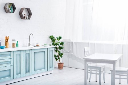 Foto de Interior de luz amplia cocina blanco y turquesa con planta verde - Imagen libre de derechos