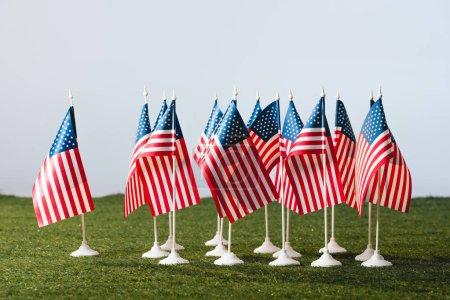 Photo pour Drapeaux américains avec des étoiles et des rayures sur l'herbe verte d'isolement sur gris - image libre de droit