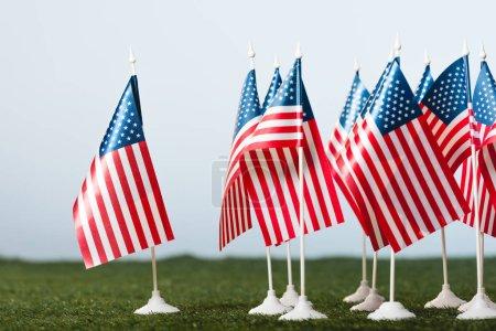 Photo pour Drapeaux américains sur l'herbe verte d'isolement sur le gris - image libre de droit