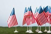 """Постер, картина, фотообои """"американские флаги на зеленой траве изолированы на серый"""""""