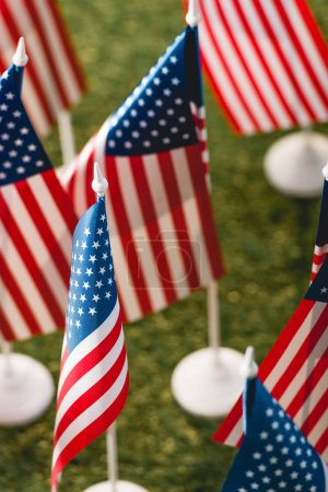 selective focus of american flags with stars and stripes on green grass