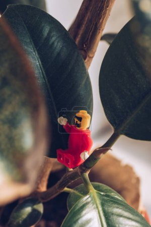 Photo for KYIV, UKRAINE - MARCH 15, 2019: selective focus of red lego figurine with beard gesturing while sitting on ficus plant - Royalty Free Image