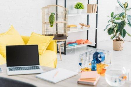 Foto de Living room with laptop on table, yellow sofa, green parrot in bird cage and rack - Imagen libre de derechos