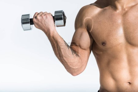 Photo for Cropped view of shirtless man with muscular torso holding dumbbell on white - Royalty Free Image