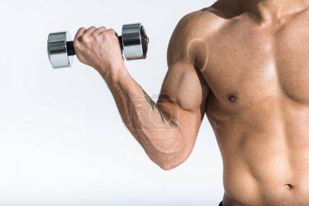 Photo pour Vue recadrée de l'homme torse nu avec le torse musculaire retenant l'haltère sur le blanc - image libre de droit
