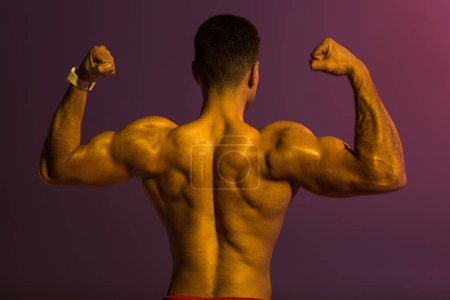 Photo for Back view of athletic man with muscular torso demonstrating biceps on purple background - Royalty Free Image