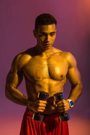 Photo for Handsome sportive mixed race man holding dumbbells on purple background with gradient - Royalty Free Image