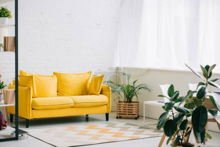 spacious living room with yellow sofa, carpet on floor and plants in flowerpots