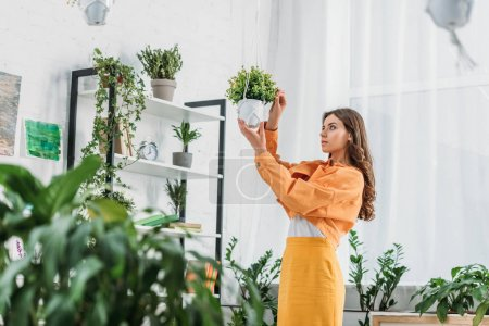 Photo for Selective focus of pretty young woman touching flowerpot while standing in spacious room - Royalty Free Image