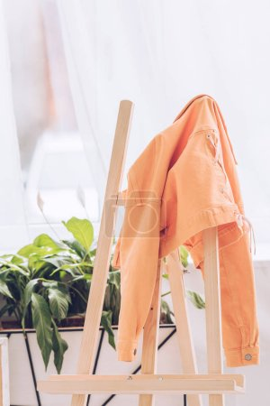 Photo for Wooden easel with orange jacket near green plants in light room - Royalty Free Image