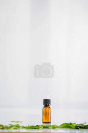 Photo pour Bouteilles en verre avec de l'huile de chanvre près de feuilles vertes sur fond blanc avec espace de copie - image libre de droit