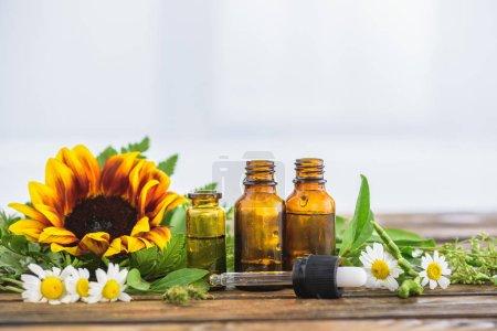 Photo pour Tournesol, fleurs de camomille, bouteilles avec des huiles essentielles et goutte-à-goutte sur fond blanc - image libre de droit