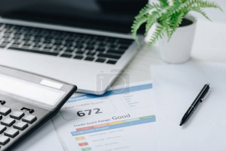 selective focus of credit report, calculator, pen, plant and paper