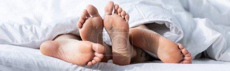 Photo pour Plan panoramique de deux lesbiennes pieds nus couchées sous la couverture - image libre de droit