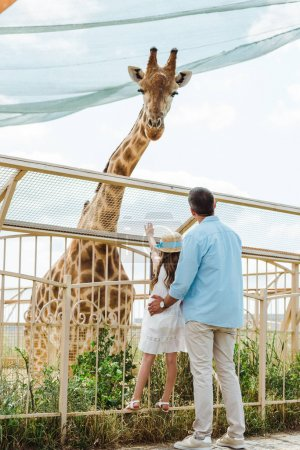 back view of father and daughter in straw hat standing near fence and giraffe in zoo