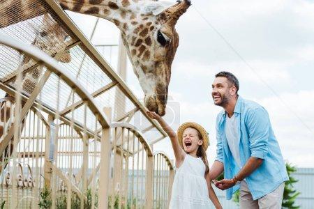 Photo pour Foyer sélectif de l'homme et du gosse gais avec les yeux fermés alimentant la girafe dans le zoo - image libre de droit