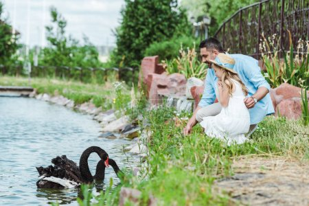 Photo pour Foyer sélectif de mignon enfant en robe et chapeau de paille assis près du père heureux et le lac avec des cygnes noirs - image libre de droit
