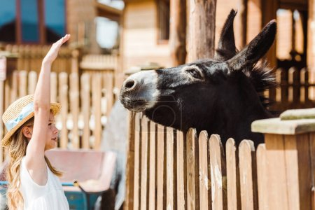 cute kid in straw hat gesturing while looking at donkey in zoo